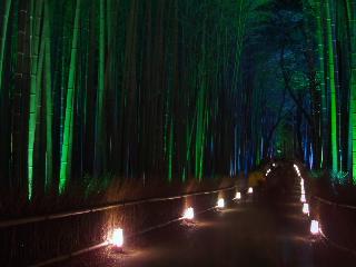 京都 001.jpg